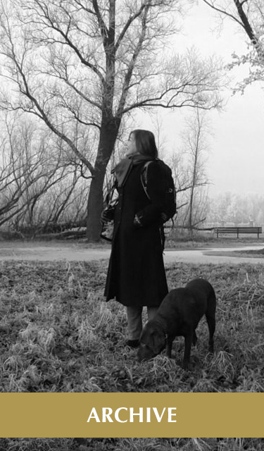 The Archive. Photo of Laura Meddens and her dog Nugget in long grass with trees and fog in the background.